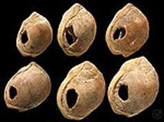 Joias descobertas na caverna em Blombos. Trata-se de pequenas conchas, que foram selecionadas e perfuradas há cerca de 75 mil anos para formar um colar, provavelmente usado como ornamento.