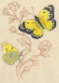 Alfalfa Butterfly on Delicate Branches design (K8624) from www.Emblibrary.com