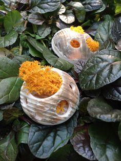 FOREST -INDIAN SUMMER  Collana - porcellana - lichene - pvc  Necklace - porcelain - moss - pvc