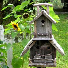 beautiful setting for a Bird House to be.