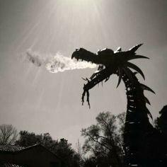 Magic Kingdom - Festival of Fantasy parade