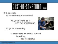GO BE WONDERFUL for an animal in need!  You can do it, we ALL can.