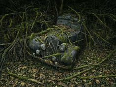 'Paradise Parking' by photographer peter Lippmann