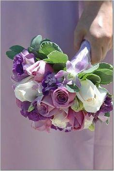 Flowers, Purple