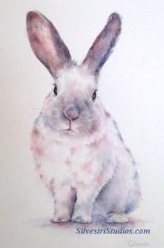 """""""Emma"""", watercolor bunny rabbit painting by animal artist Teresa Silvestri.  Original sold, but prints & cards available.  Photo reference thanks to East Bay Rabbit Rescue."""