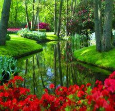 Beautiful Nature And Animals - Google+