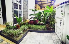 23 Best Desain Taman Kolam Ikan Koi Images Koi Backyards Gardens