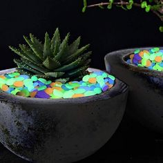 The latest hot decor idea - Glowing Pebbles Be the first in your neighborhood to spice up your yard, patio, or terrace with acce… Dream Garden, Garden Art, Garden Design, Garden Ideas, Terrace Garden, Diy Garden Furniture, Furniture Projects, Furniture Design, Outdoor Furniture