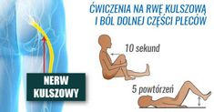 6 najbardziej skutecznych ćwiczeń na rwę kulszową i ból dolnej części pleców. Youtube, Youtubers, Youtube Movies
