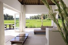 white villa in the rice fields with private pool in Ubud