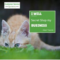 Signature Canada - Google+ My Design, Canada, Cats, Google, Animals, Gatos, Animales, Animaux, Animal