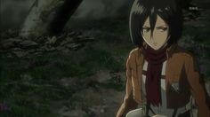 Mikasa ميكاسا