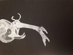 insecto, puntiliismo, detalle, negro y blanco, diseño