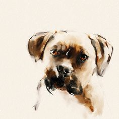 Jake (Boxer - Dog) by GS Kendall | Watercolor