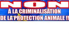 LA DÉMOCRATIE EST EN DANGER ! Traduction Français-Anglais-Espagnol-Italien-AllemandDÉFENDRE LES DROITS DES ANIMAUX SERA PROCHAINEMENT PERÇU PAR L'EUROPE COMME UNE ACTIVITÉ CRIMINELLE !L'Europe envisage d'interdire la liberté de déplacement de certains militants de la Cause Animale.Les militants de la cause animale qualifiés de CRIMINELS ITINÉRANTS, pour reprendre les propos exactes des institutions Européennes.Défendre les droits des animaux est donc perçu par l'UE comme une action ...