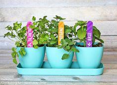 Herb garden marker printables I Heart Nap Time | I Heart Nap Time - Easy recipes, DIY crafts, Homemaking
