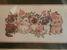 Five In A Row, Counted Cross Stitch Kits, Cross Stitching, Crafting, Amazon, Cats, Amazons, Gatos, Riding Habit