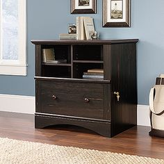 Locking drawer with full extension slides holds letter, legal, or European size hanging files.  Cubbyhole storage features two adjustable shelves.  Quick and easy assembly with patented T-lock drawer assembly system.  Antiqued Paint finish.