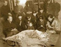 Una delle foto più toccanti della storia. 8 marzo 1934: il cane Hachiko è stato appena trovato morto nei pressi della Stazione di Shibuya ove andò regolarmente invano ad attendere il suo padrone, il professor Hidesaburō Ueno morto 10 anni prima improvvisamente. Tutti nella stazione conoscevano questo cane e vedendolo morto si raccolsero in preghiera come se fosse un loro caro