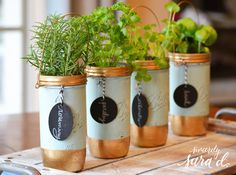 Have you ever dreamed of creating your own Mason jar herb garden? Check out this blog post for tips on how I created my own!