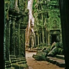 Ta Prohm is a temple at Angkor, Cambodia,