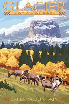 Chief Mountain & Big Horn Sheep - Glacier National Park, Montana - Lantern Press Poster