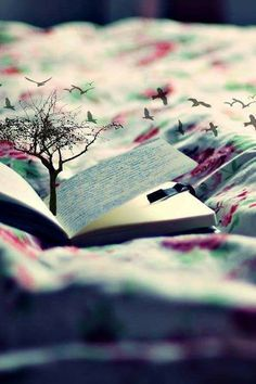 Every page of a book is a world you can lose yourself in...