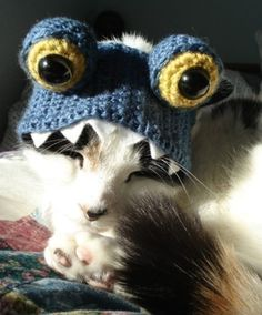 Cat Hat Crochet Pattern The Best Collection Ever | The WHOot