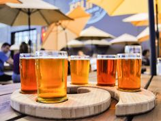 Culmination Brewing - Bars & Clubs - Pick from the drinks and food in their menu which are all amazing like the crispy sweet potatoes in Culmination Brewing