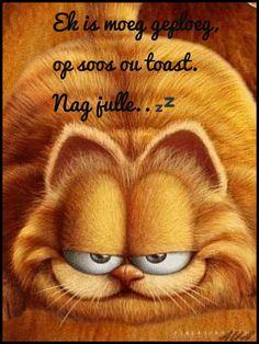 Nagsê Good Night Image, Good Morning Good Night, Goeie Nag, Afrikaans Quotes, Good Night Quotes, Beautiful Pictures, Kitty, Sayings, Amen
