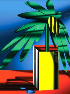 WASH - braulioamado: All my plants die