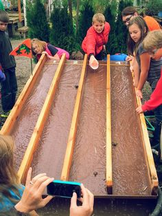 Toad Races were a big hit with the kids at the 2014 Skagit Valley Giant Pumpkin Festival.