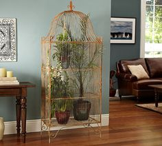 bird cage with plants