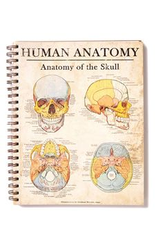 a4 campus notebook, CL SO PHRENOLOGY