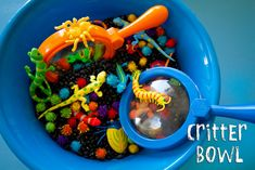 Dig, Sort, and Count with this bowl of critters!