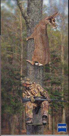 Create and share funny deer hunting graphics and comments with friends. Deer Hunting Humor, Hunting Jokes, Funny Hunting Pics, Deer Camp, Hunting Camo, Hunting Stuff, Hunting Girls, Turkey Hunting, Funny Animal Pictures
