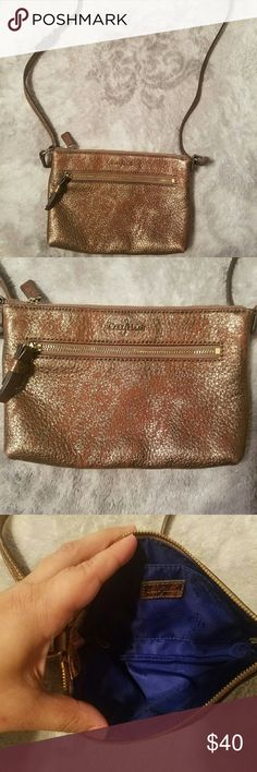 Cole Haan crossbody Beautiful Metallic mini crossbody with blue lining inside  Great condition. Cole Haan Bags Crossbody Bags