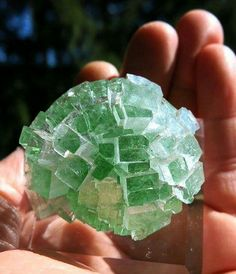 """Small Cabinet Size Apophyllite """"Disco Ball"""" Perfect Radial Crystal Cluster.  Credit: Golden Hour Minerals  Geology Wonders"""