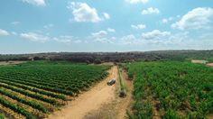 #gopro #drone #countryside #puglia