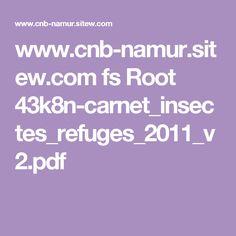 www.cnb-namur.sitew.com fs Root 43k8n-carnet_insectes_refuges_2011_v2.pdf