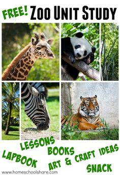 Free Zoo Unit Study & Lapbook