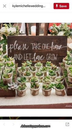 Decoration   Decoration Anniversary Party Favors, Engagement Party Favors, 25th Wedding Anniversary, Anniversary Gifts, Plant Wedding Favors, Ideias Diy, Bridal Shower, Baby Shower, Rustic Wedding