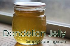 Dandelion jelly is a taste of spring, all year round! Learn how here.