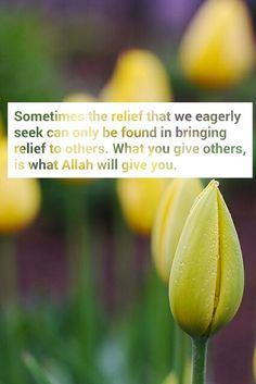 Bring relief to others...