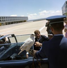June 5, 1963  President John F. Kennedy Views U.S. Air Force Academy Falcon Mascot - John F. Kennedy Presidential Library & Museum