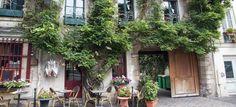 W Paryżu każdy może zostać miejskim ogrodnikiem i zazieleniać miasto