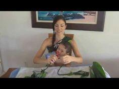 How to Make Ti Leaf Lei – Single/Double Strand & Roses! Moana Hawaiian, Hawaiian Theme, Little Hawaiian, Graduation Leis, Crafts For Kids, Roses, Leaves, Hula, Youtube
