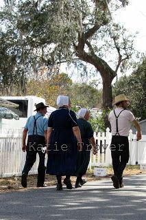 357 Best Amish Pinecraft Images In 2019 Amish Amish