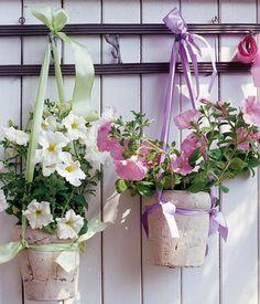 balkonpflanzen_petunien
