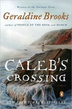 Caleb's Crossing by Geraldine Brooks. Pulitzer Prize winner and author conveys cross cultural conflict in the 1660's through a fictional account based loosely on the 1st Wampanoag Native to graduate from Harvard (1965).